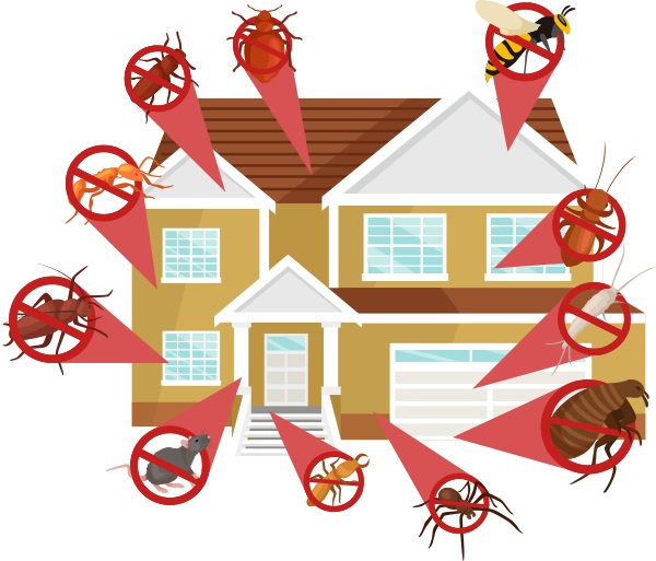 Affordable Exterminating Services Pollock, LA 71467
